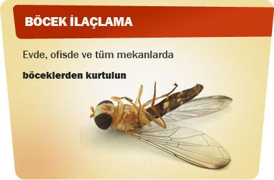Gebze Böcek İlaçlama