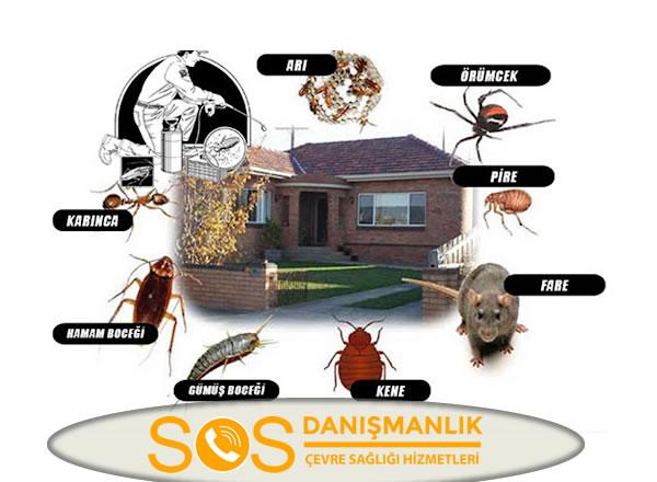 Bakırköy Böcek İlaçlama