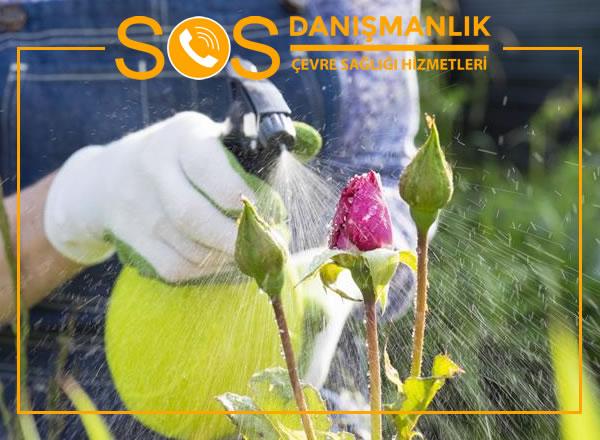 Bahçe İlaçlama – Bahçelerinizdeki Zararlı Canlılardan Kurtulun