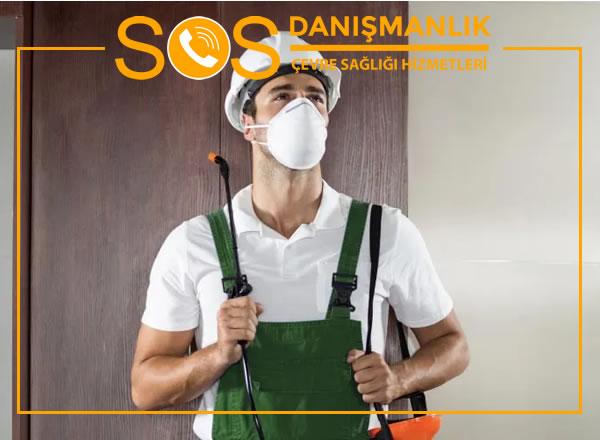 İstanbul Böcek İlaçlama Firmaları – İstanbul' da En İyi Böcek İlaçlama Firması Hangisi?