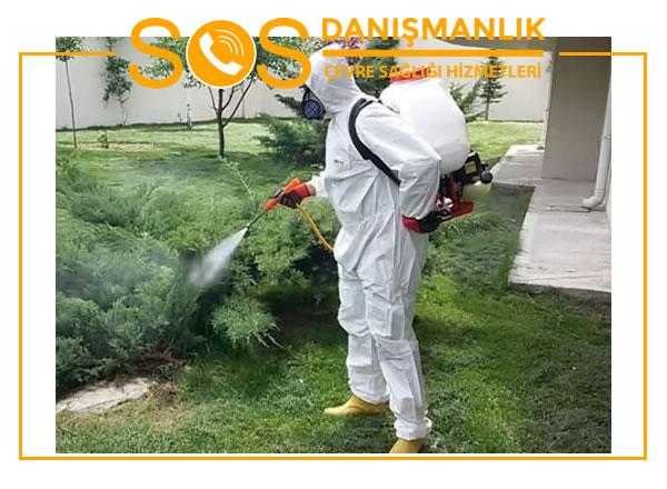 Böcek İlaçlama Şirketleri