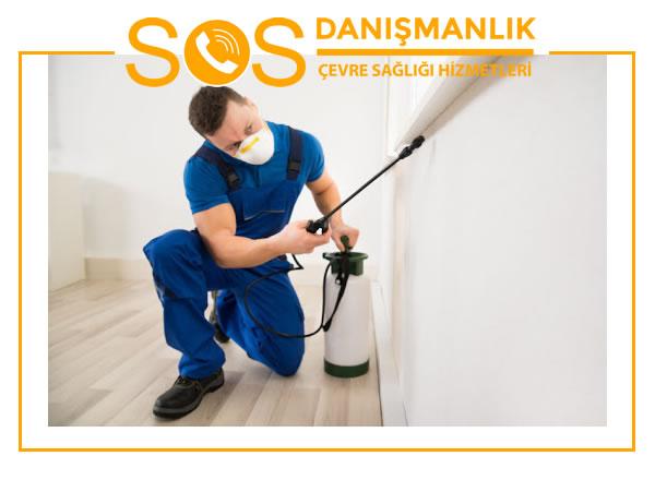 İstanbul Böcek İlaçlama Firmaları
