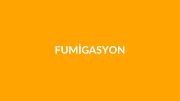 Fumigasyon