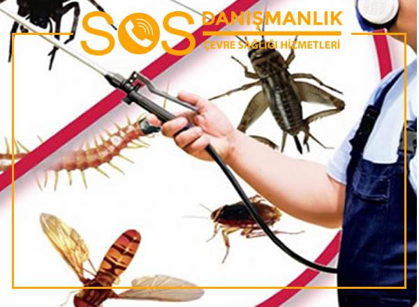 Böcek İlaçlama Şirketi